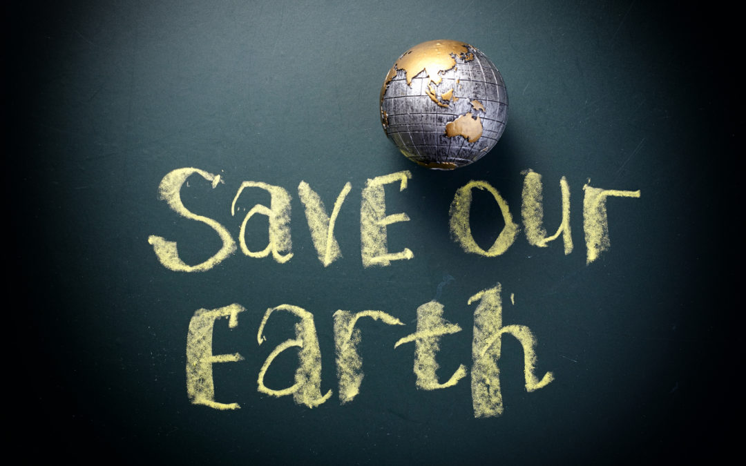 The Pinnacle Financial Group – Winners Announced!!! The PFG's 'Save the Earth' Essay Contest